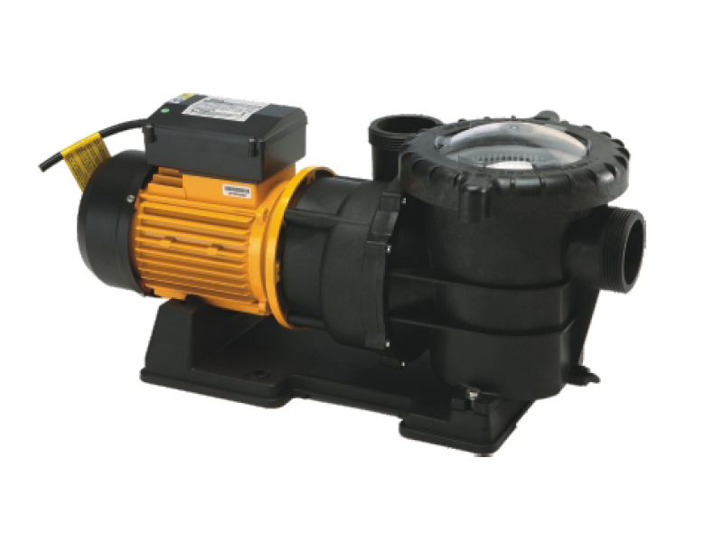 Swimming Pool Pump WFT