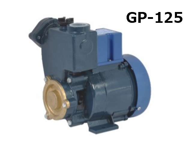 GP125 Series Self-priming Peripheral Pumps